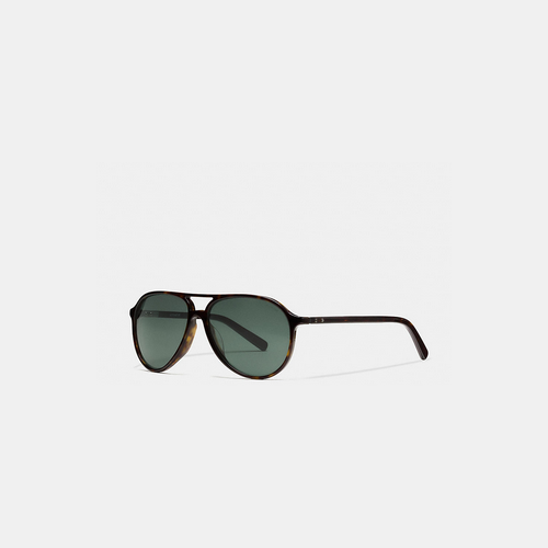 Coach Outlet Store & COACH SUTTON sunglasses DARK TORTOISE